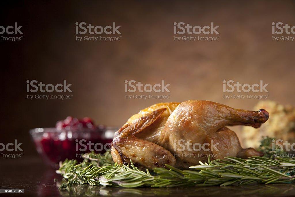 Thanksgiving Turkey royalty-free stock photo