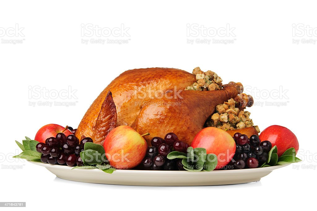 Thanksgiving Turkey stock photo