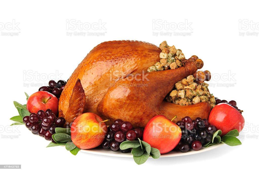 Thanksgiving Turkey stock photo