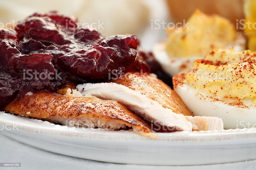 Thanksgiving Turkey with Cranberry Sauce stock photo