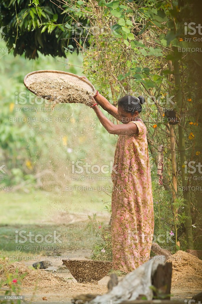 Tharu woman farming in Terai stock photo
