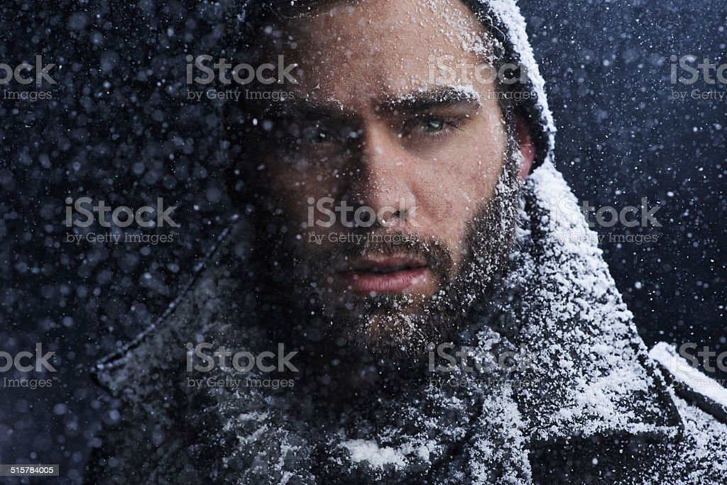 That cold stare could melt any heart stock photo