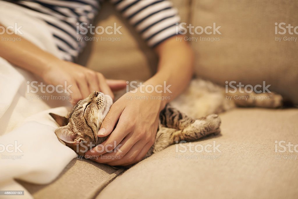That feels puuuuurfect stock photo
