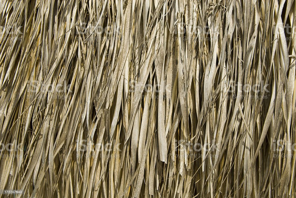 Thatch Background royalty-free stock photo