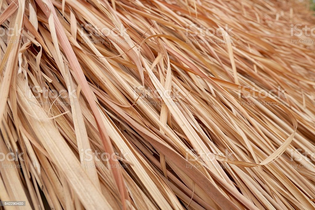 Thatch roof background, hay or dry grass background. stock photo