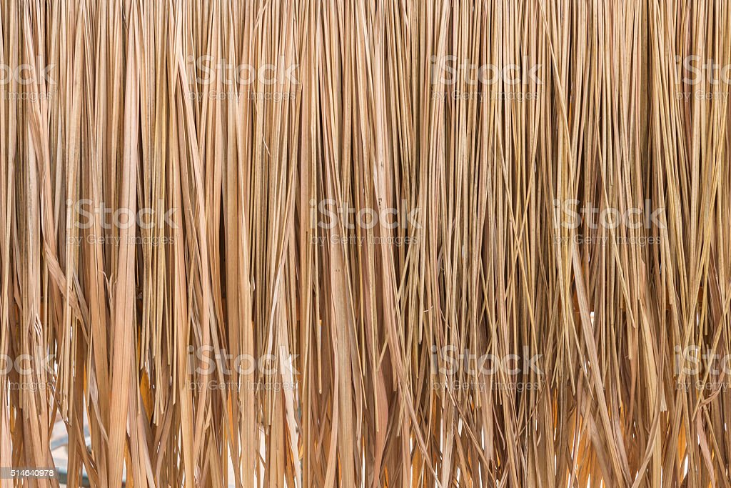 Thatch roof hay or dry grass background stock photo
