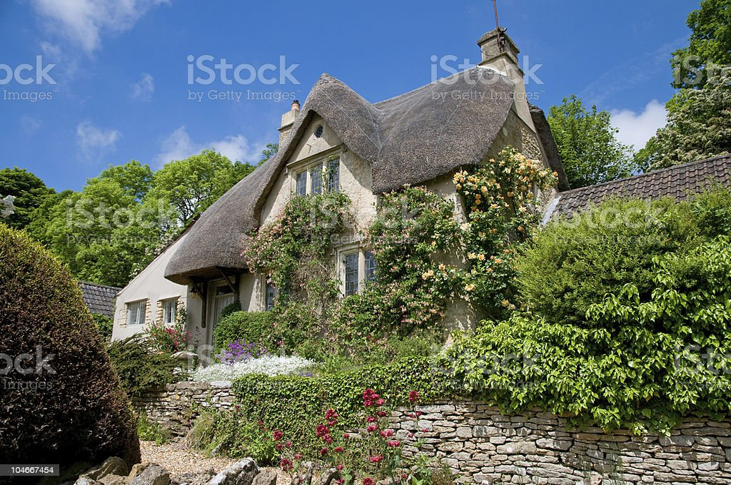 Thatched cottage with beautiful green vegetation stock photo