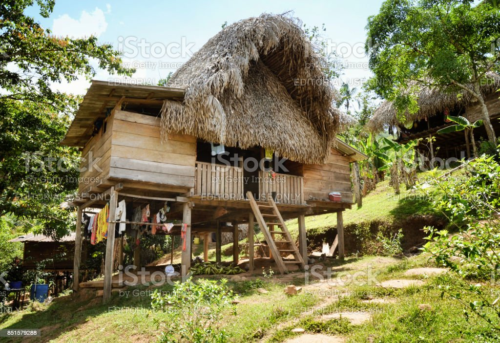 Thatched hut - Native indian home at the Embera Indian village. stock photo