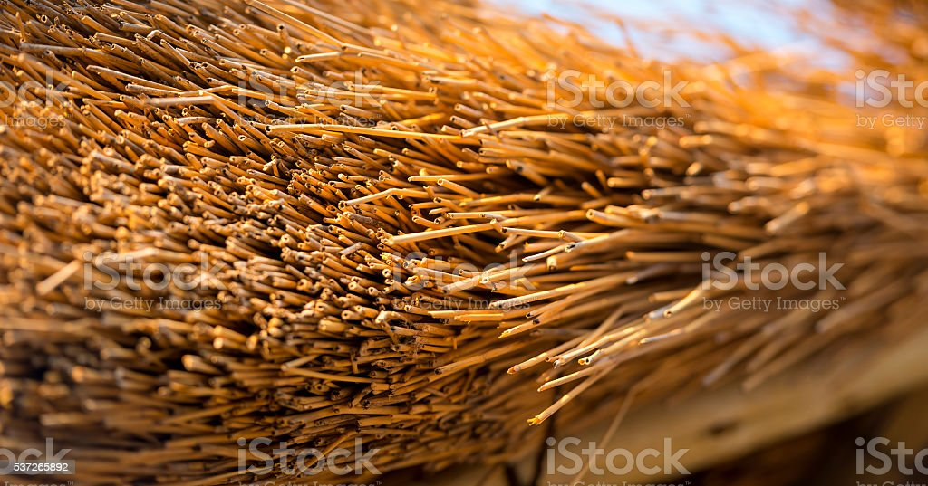 Thatched Roof Detail stock photo