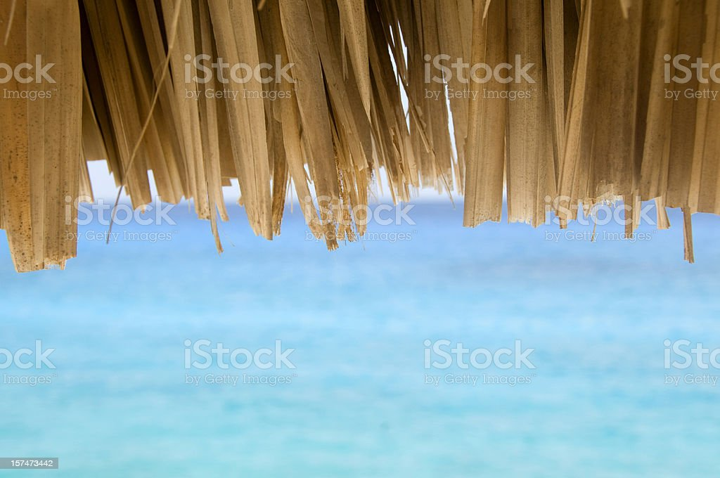 Thatched Roof Hut on Ocean stock photo
