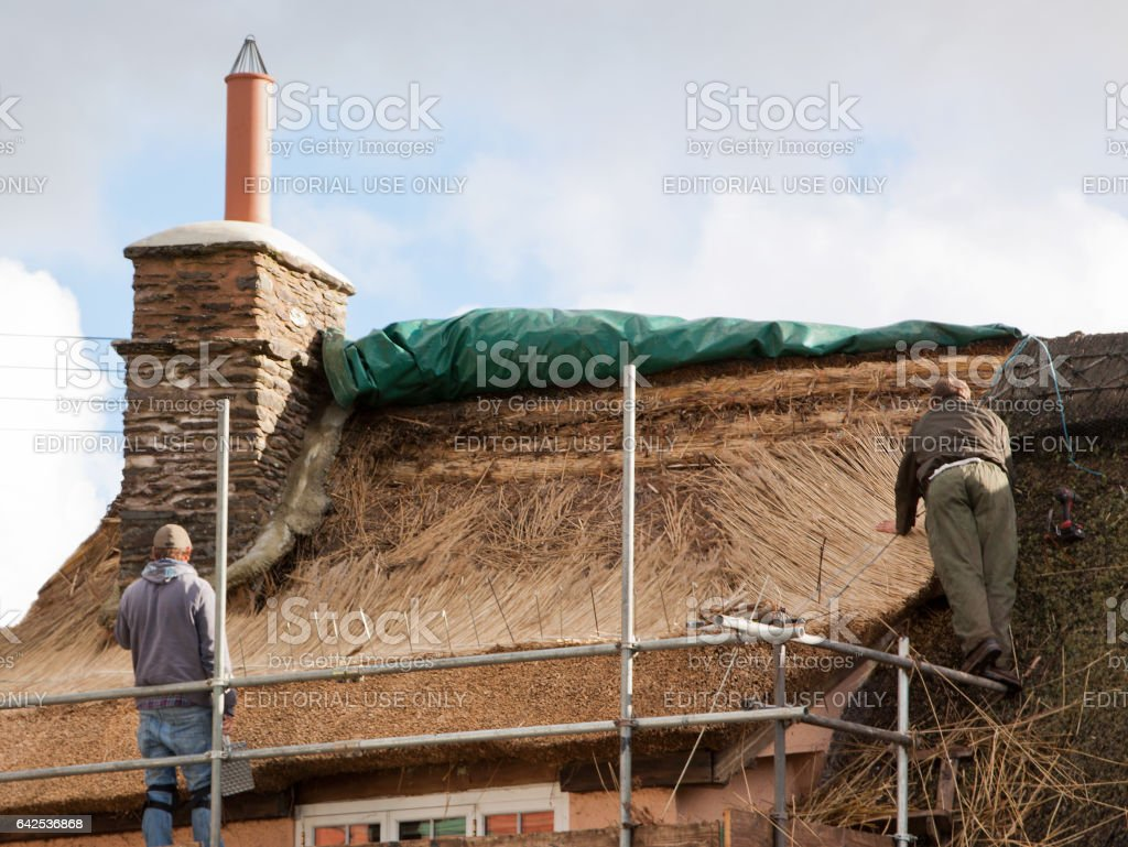 Thatchers replacing a cottage roof in Somerset UK stock photo