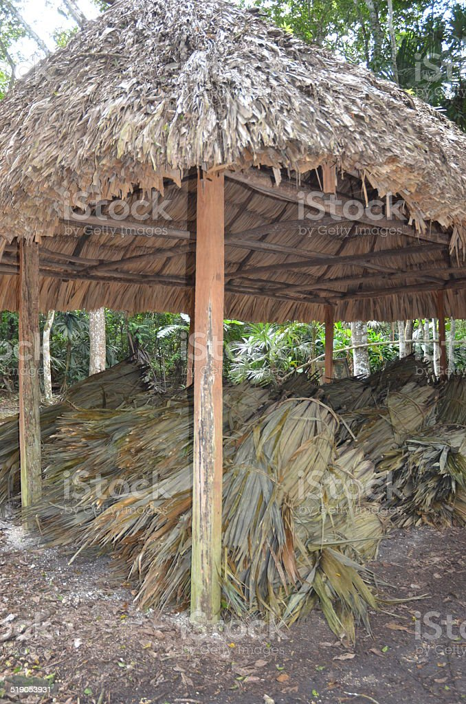 Thatching materials royalty-free stock photo