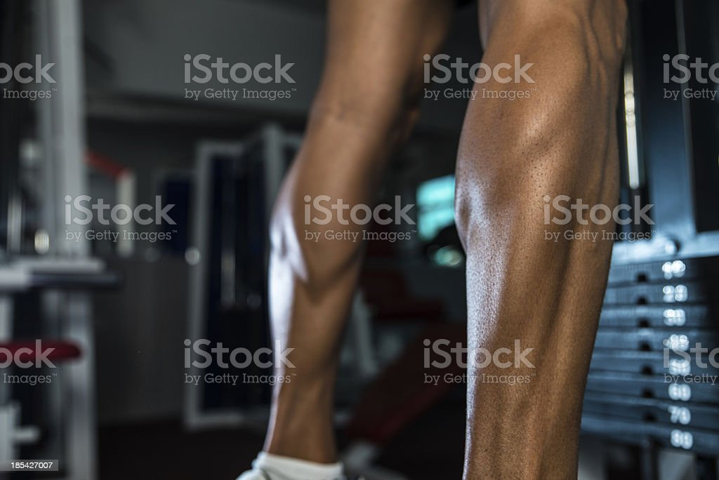 Thats How You Train Legs Calves royalty-free stock photo