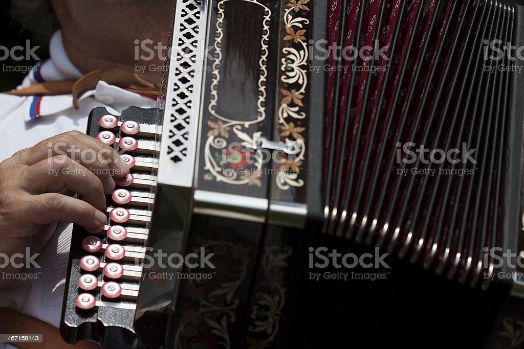 The accordion stock photo
