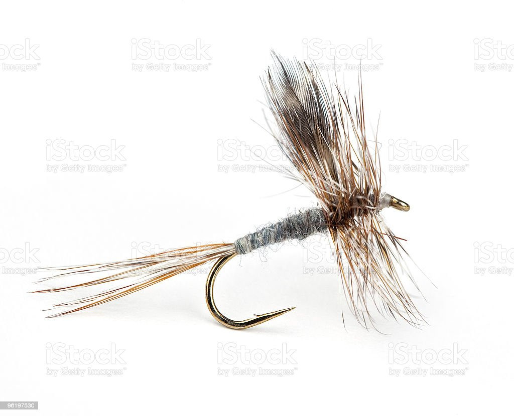 The Adams Dry Fly stock photo