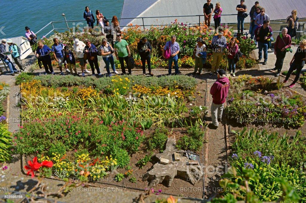 The Alcatraz Island's Botanical Garden stock photo