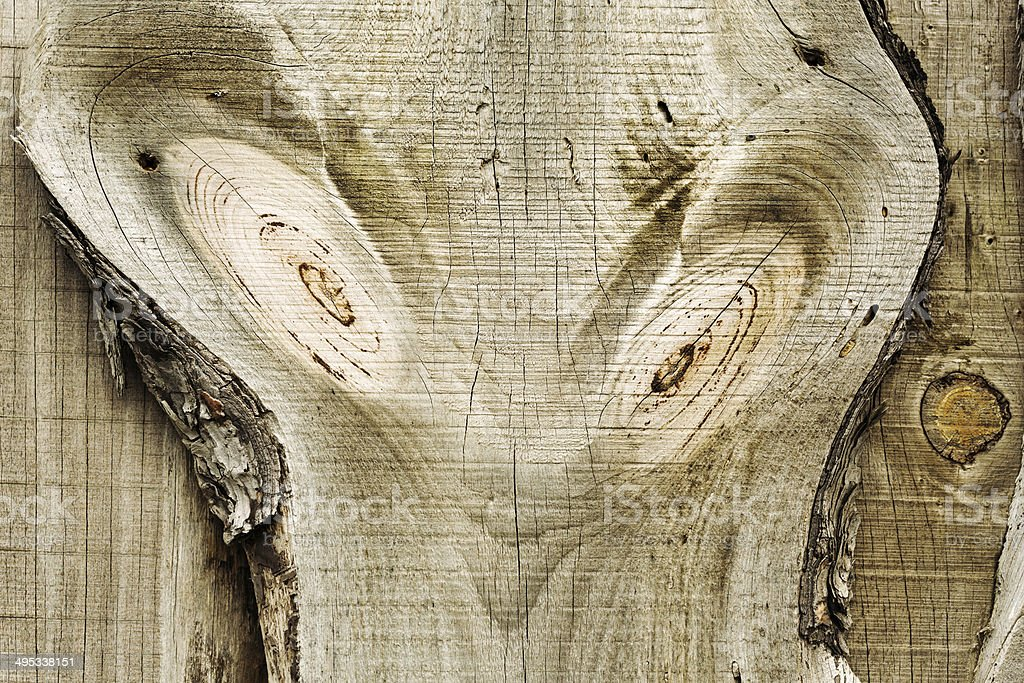 The aliens are here! Other-worldly face seen in wood grain stock photo