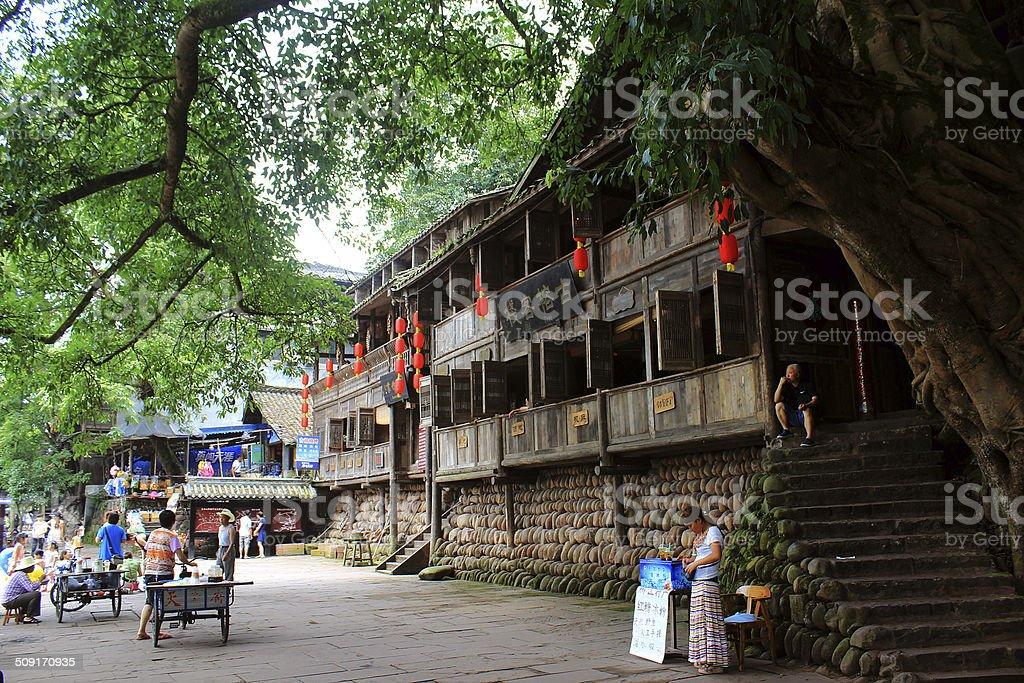 The ancient banyan below royalty-free stock photo