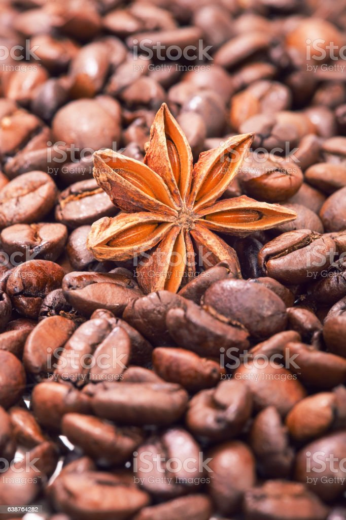 The anisetree lying in arabica coffee grains. stock photo