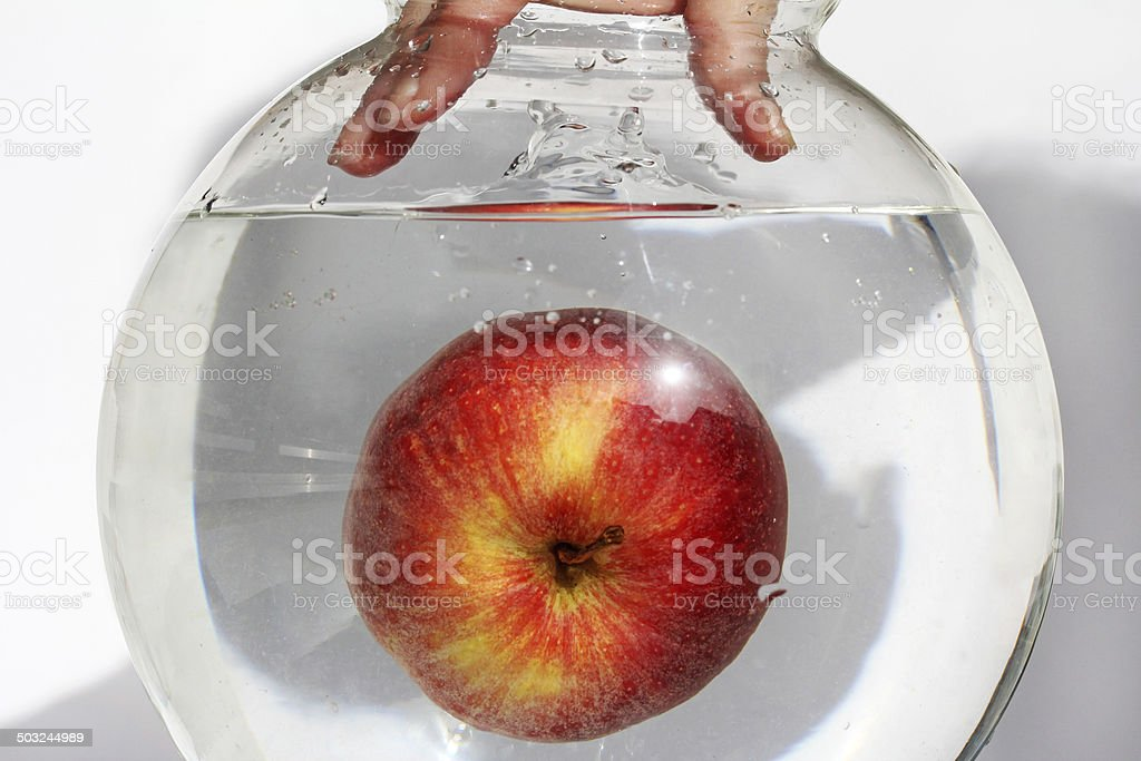 the apple stock photo