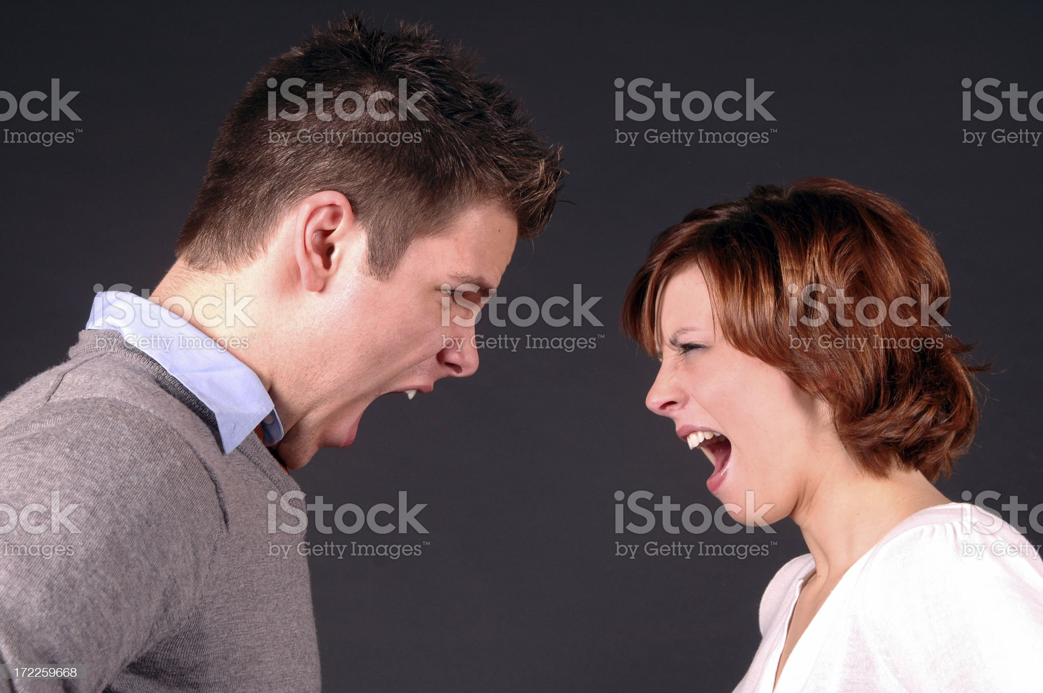 The Argument royalty-free stock photo