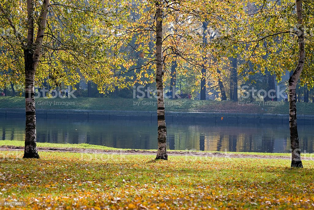 The autumn embankment stock photo