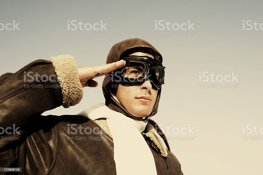 The Aviator royalty-free stock photo