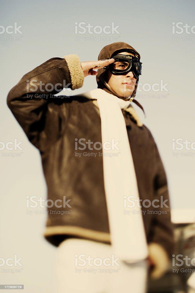 The Aviator royalty-free stock photo