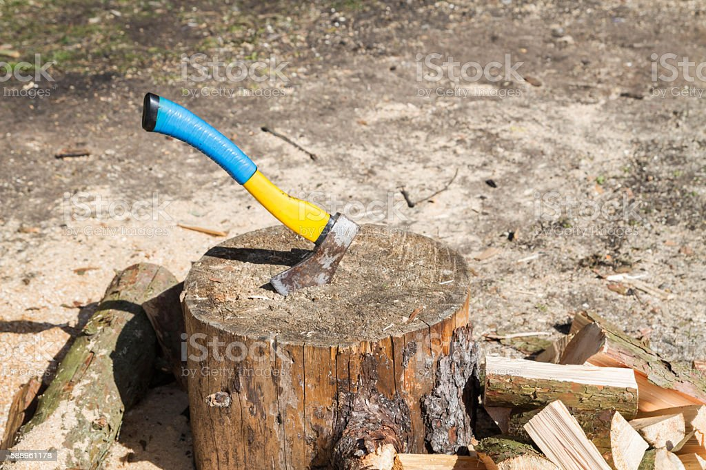 The axe in a log in the woods stock photo