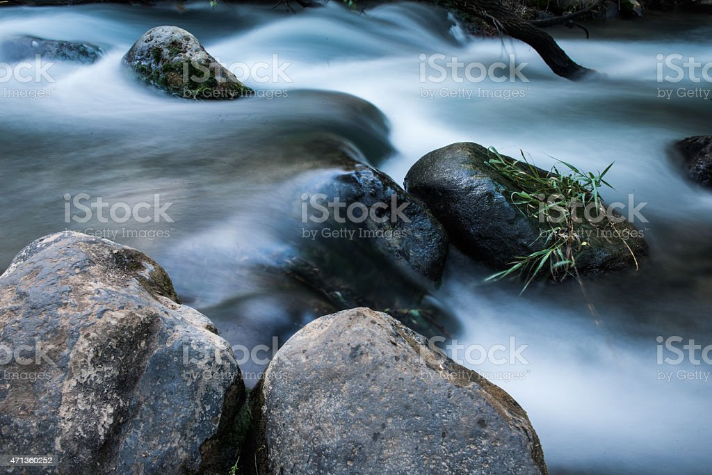 the banias river in israel stock photo