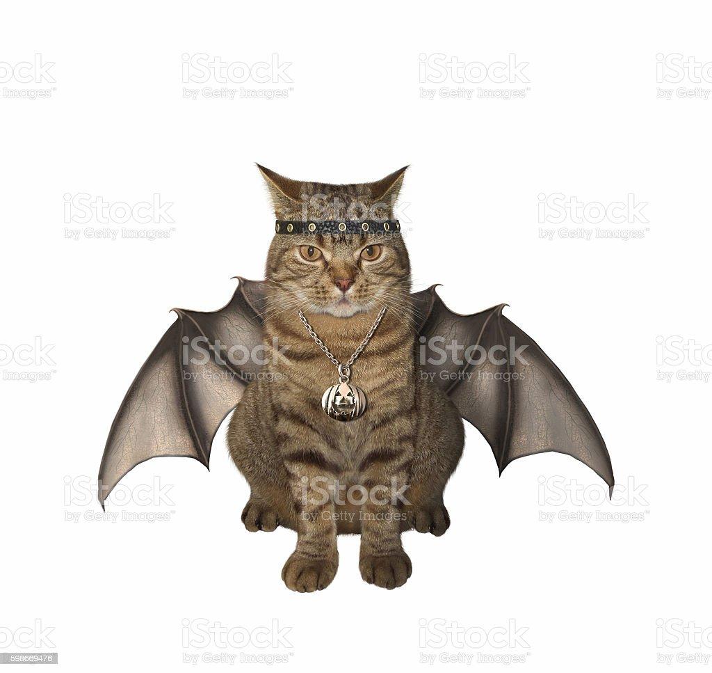 The bat -  cat. stock photo