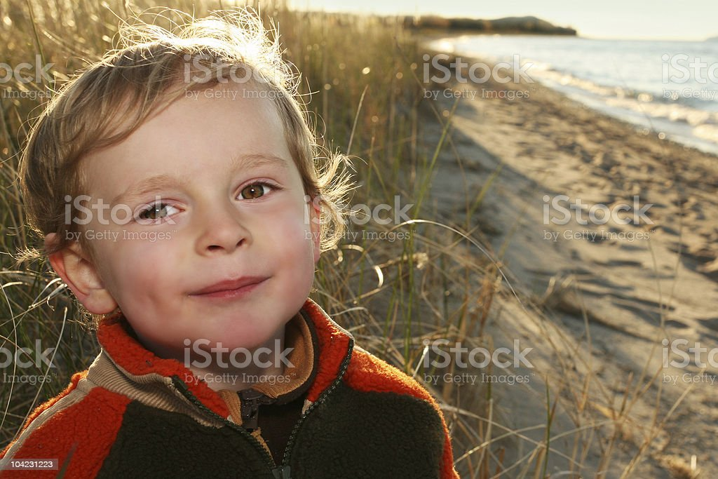 The Beach at Sunset royalty-free stock photo