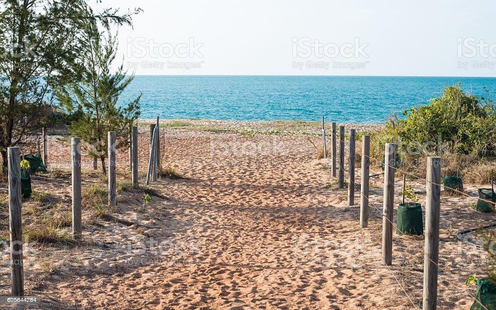 The beach in Nhulunbuy town, NT, Australia. stock photo
