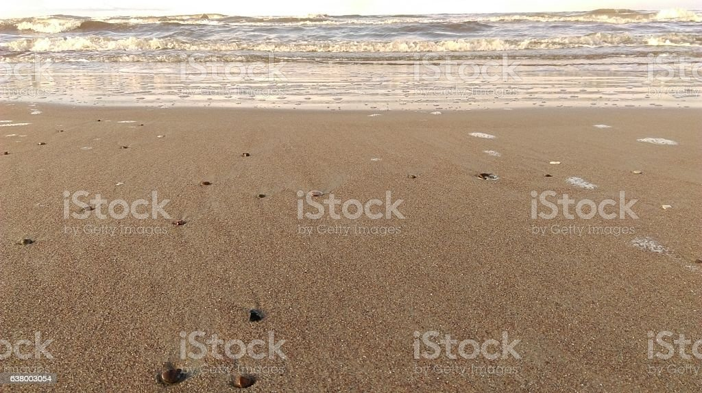 The beach on evening stock photo