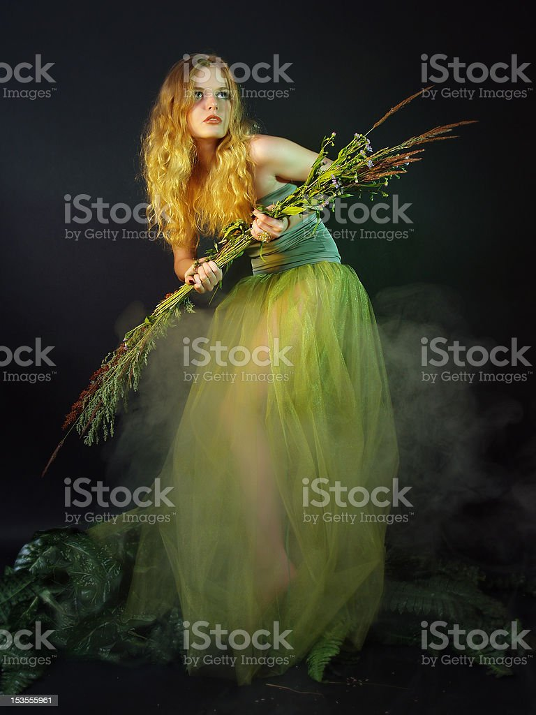 The beautiful mysterious girl in a twilight royalty-free stock photo