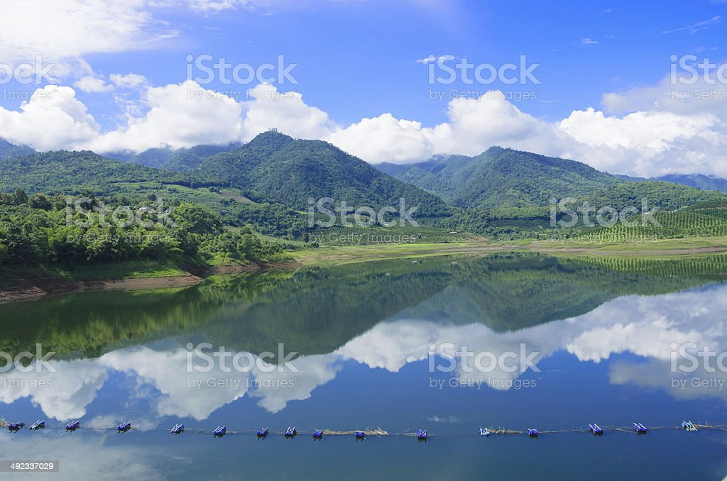 The beauty of abundance forest in dam stock photo