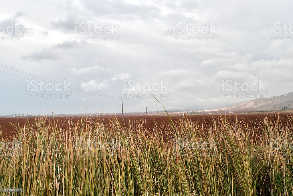 the beauty of the valley stock photo