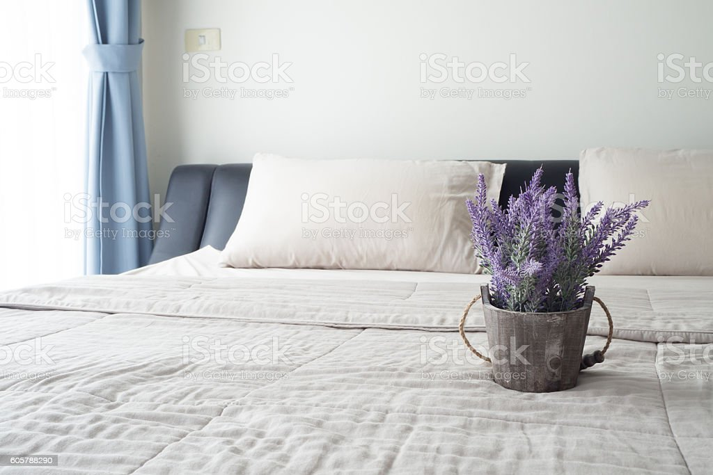 The bed with purple lavender flower on flower pot. stock photo
