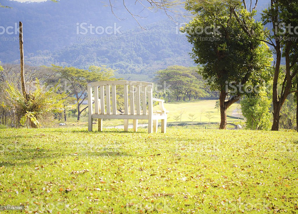 The bench on hill royalty-free stock photo
