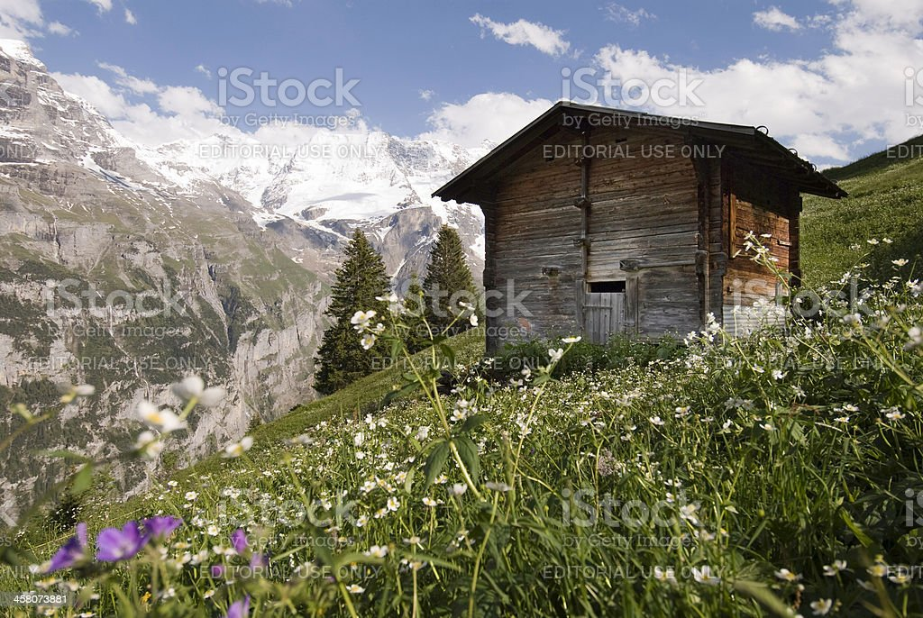The Bernese Oberland royalty-free stock photo