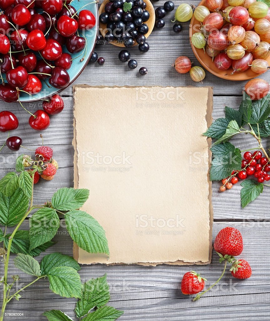 The berries, green leaf and old paper stock photo