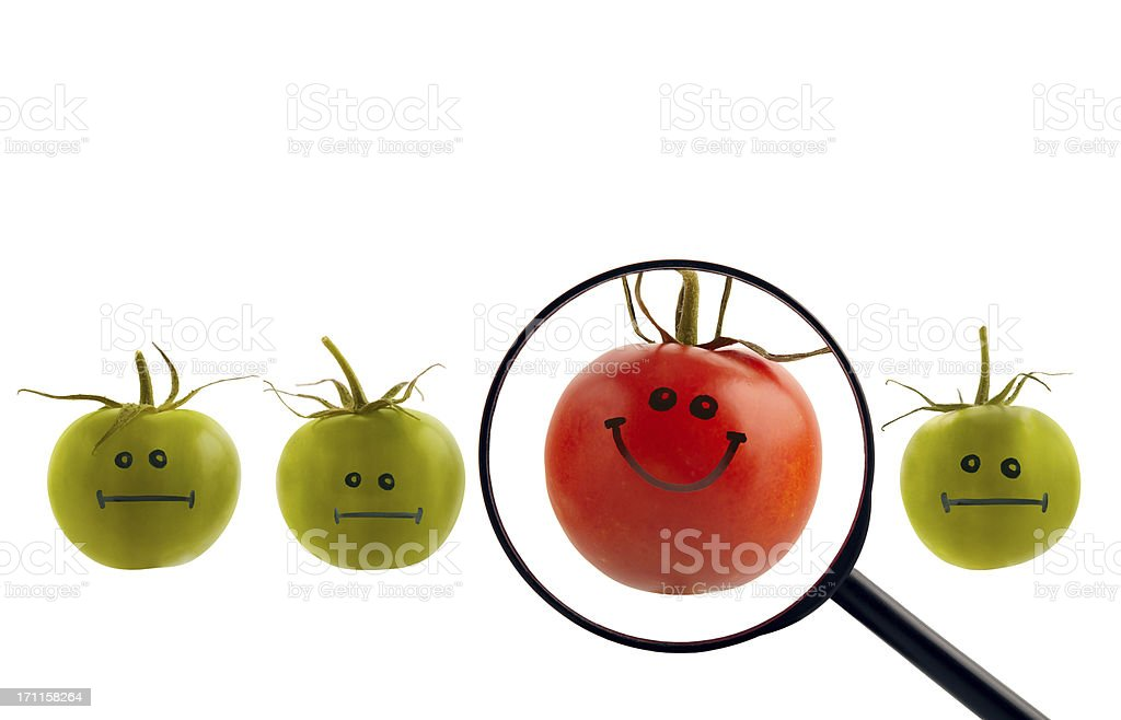 The best tomato concept royalty-free stock photo