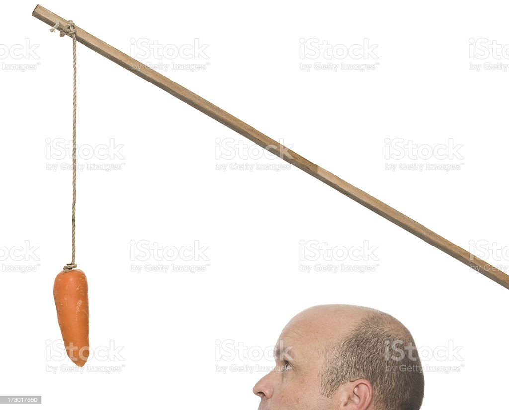 The Big Carrot royalty-free stock photo