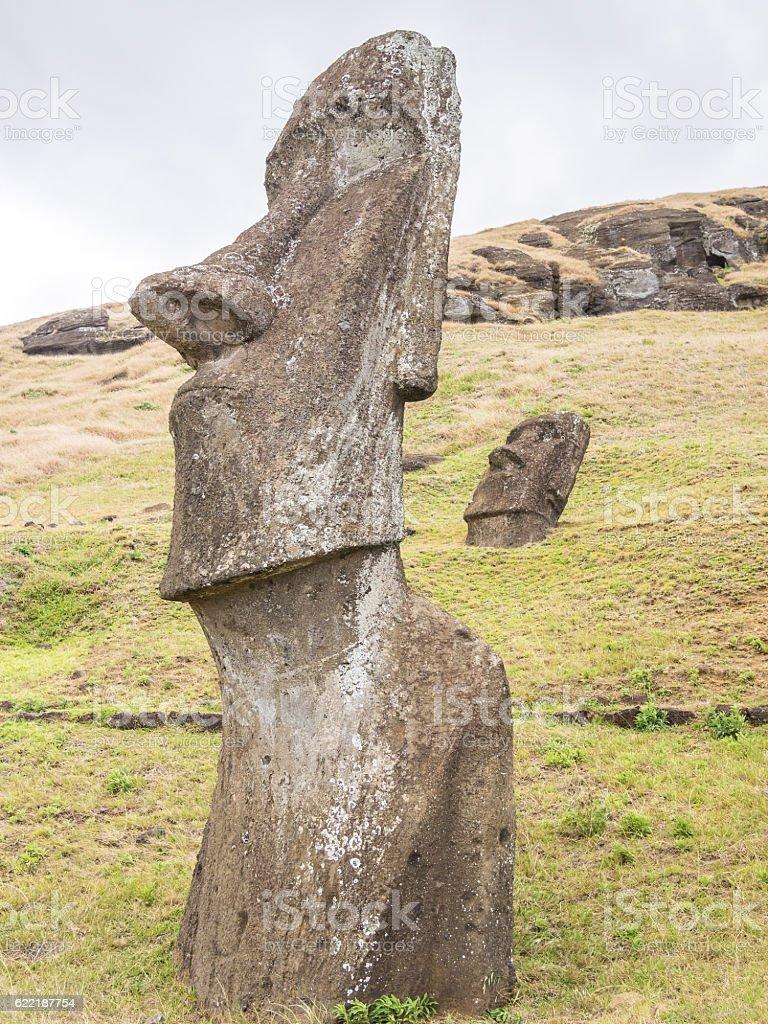 The big moai of the quarry stock photo
