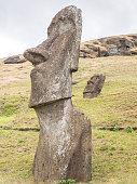 The big moai of the quarry