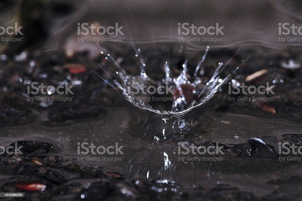 The big raindrop stock photo