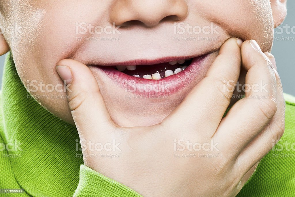 The Big Smile royalty-free stock photo