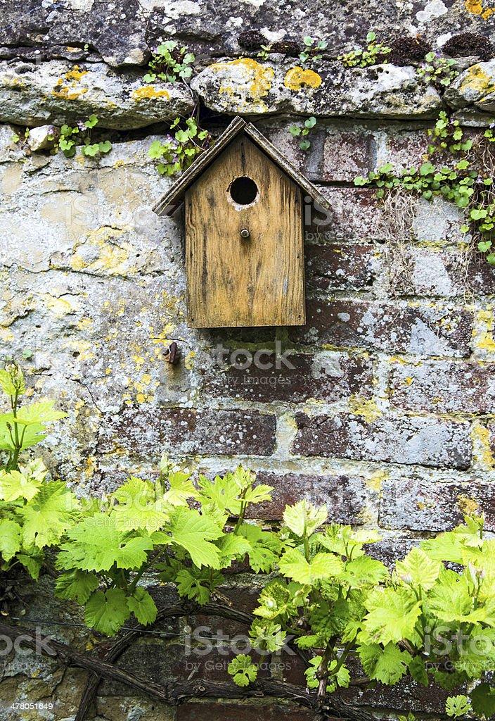 The Birdhouse royalty-free stock photo