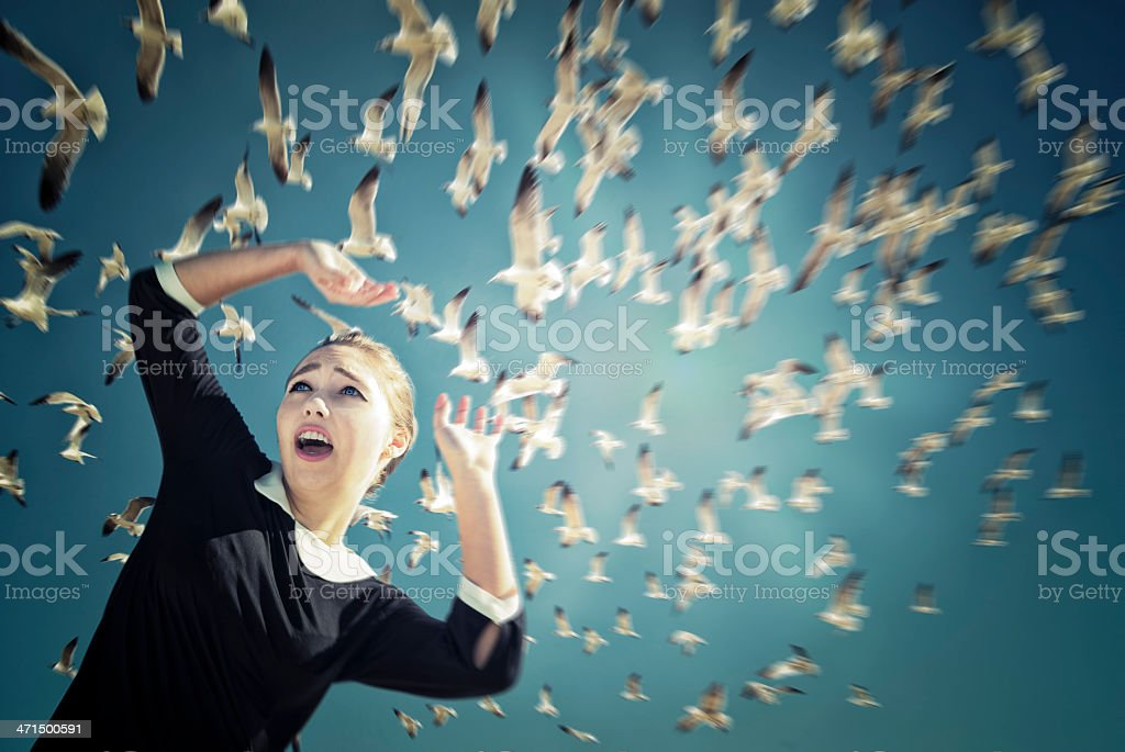 The birds revisited; flock of seagulls flying over scared woman. stock photo