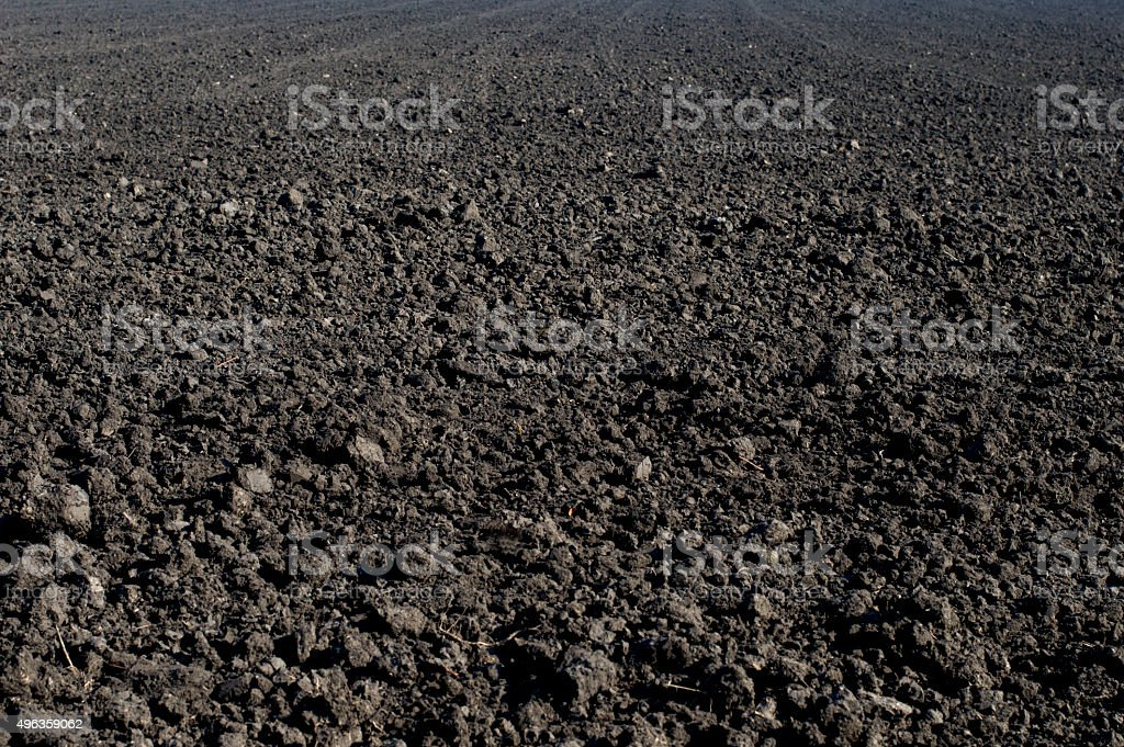 the black plowed field in the fall stock photo